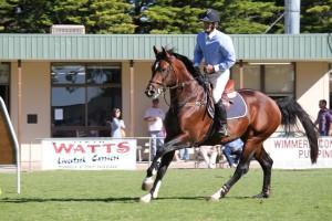 Horse Events at Mundulla Show